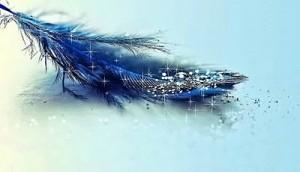 Magic-feather-original