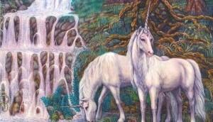 twin.unicorns